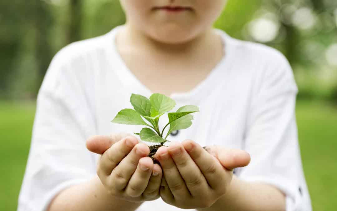 Utilisez vos éco-chèques en achetant des produits Ecolabel